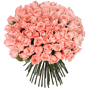 Букеты на 14 февраля - Букет из 101 розовой розы