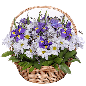 Корзина цветов Любимый сюжет